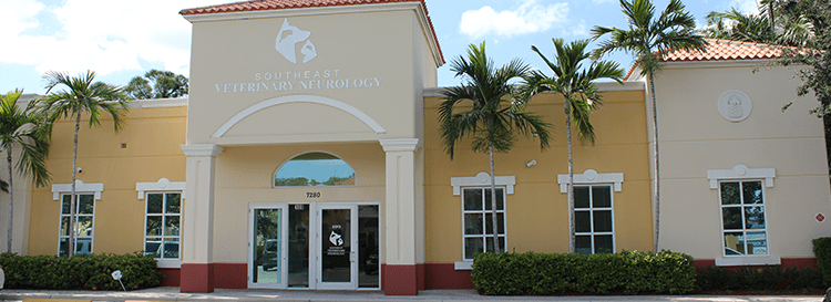 Pet Neurological Care in Boynton Beach: External View of Practice