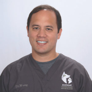 Pet Neurological Care in South Florida: Dr. Michael Wong